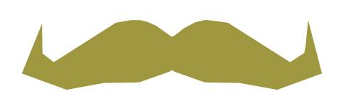 Movember2010_icon